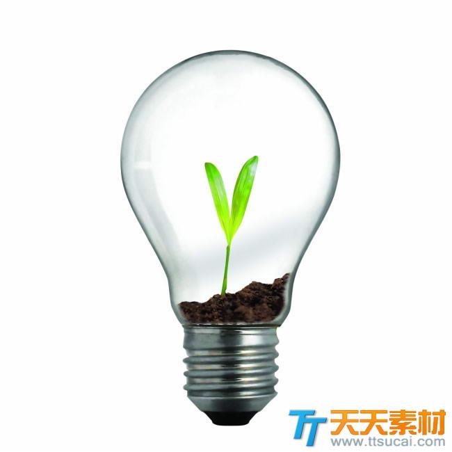 环保灯泡里的树苗创意图片