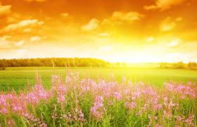 唯美夕阳风景高清图片