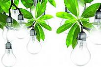 树枝上长着灯泡广告创意图片