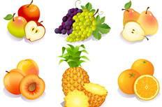 美味水果图标矢量图下载